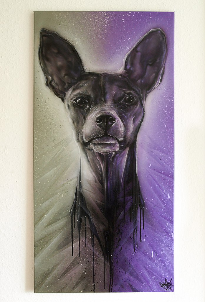Dog grey/purple